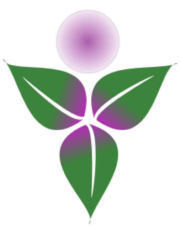 Body Wisdom CranioSacral Therapy