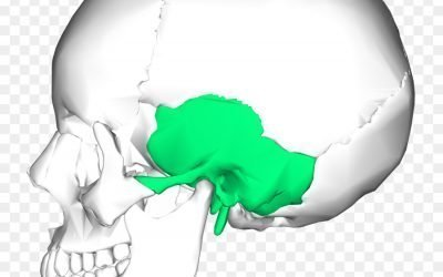Temporal Bone Dysfunction – Vertigo & Migraines